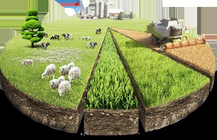 Реализация земли и объектов